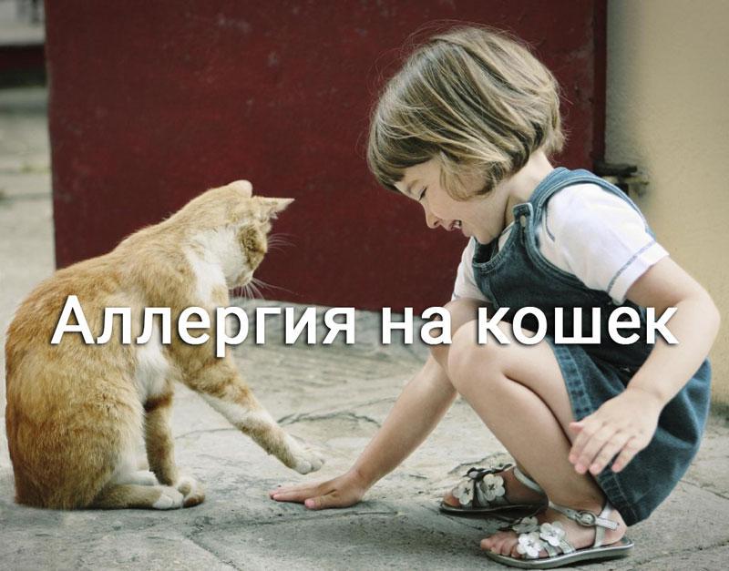 девочка играет с кошкой