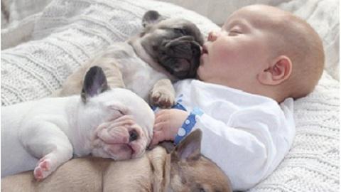Ребенок, спящий со щенками