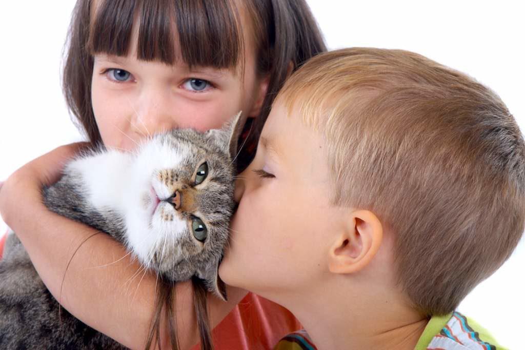 дети держат кошку