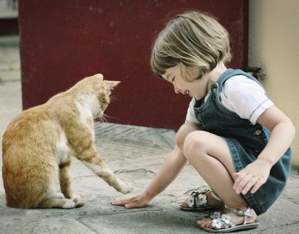 девочка и кошка играют