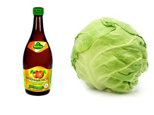Свежая капуста и яблочный уксус