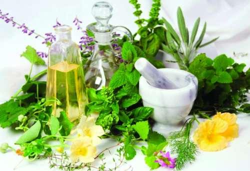 Разные травы и бутылки с жидкостями