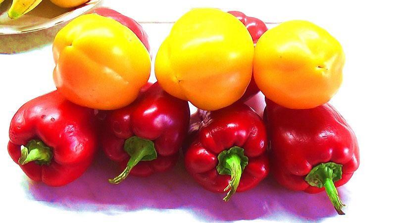 Желтые и красные перцы