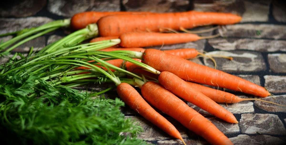 Морковь с зеленью