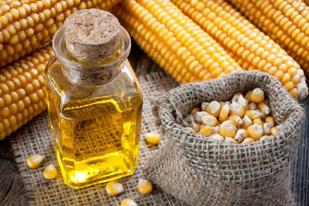 Кукуруза и её зерна