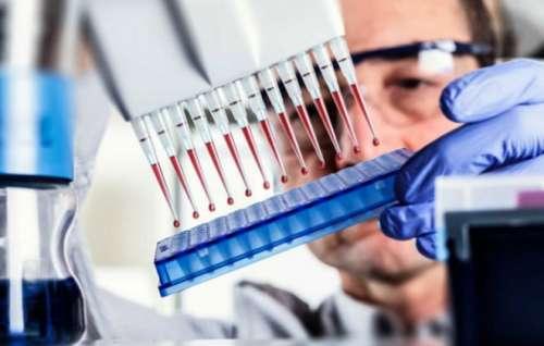 Врач проводит иммуноферментный анализ крови