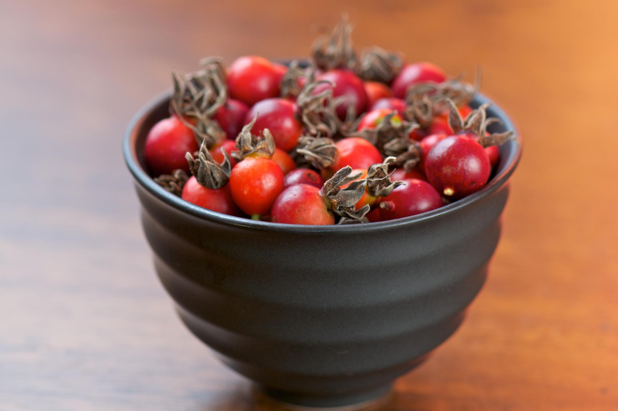 Красный шиповник в чашке